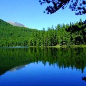 Турбаза на оз. Дикое (месторождения целебных радоновых вод)