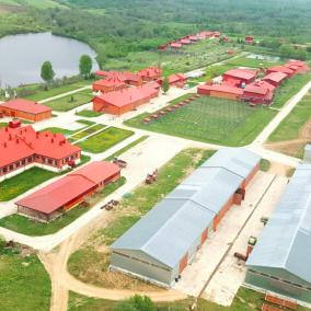 Крупный животноводческий комплекс по разведению мясных пород КРС